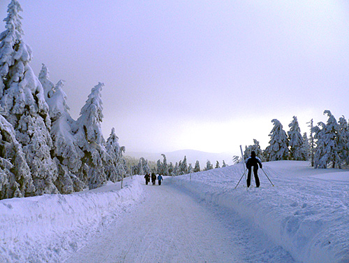 Winter - Wanderung im Harz