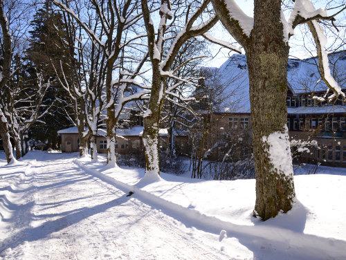 Park im Winter – Krankenhaus Sanatorium Dr. Barner
