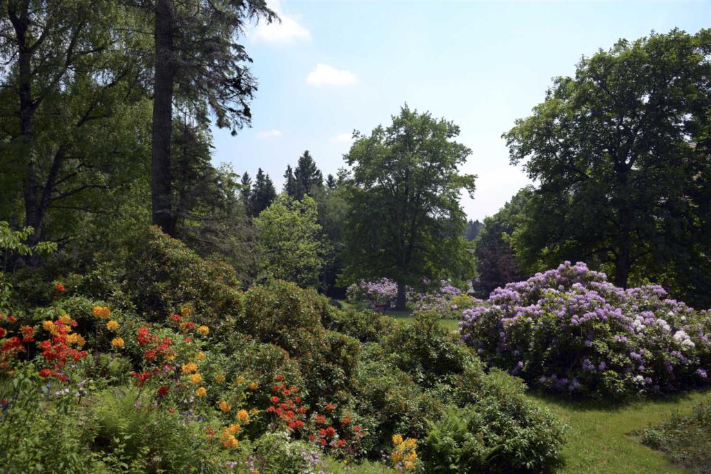 Klinik Dr. Barner - Park zur Rhododendronblüte